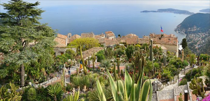 A view of the gardens at Eze with exotic plants looking down towards the village roofs and the sea below