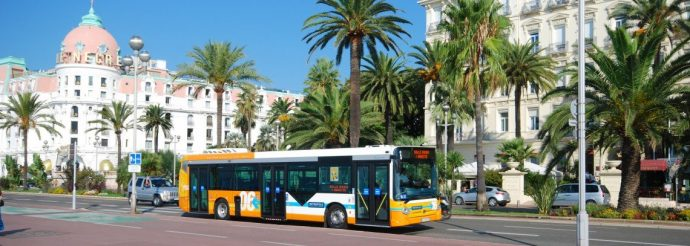 A bus in the city of Nice, with palm trees behind it on a sunny day