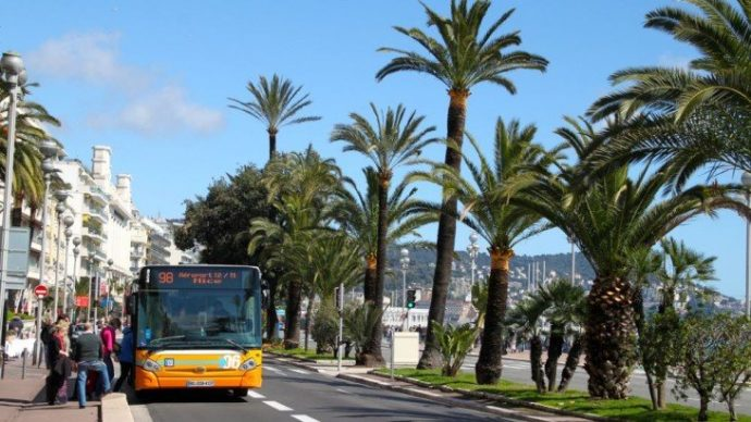 Yellow bus and palm trees on a sunny day in Nice, France