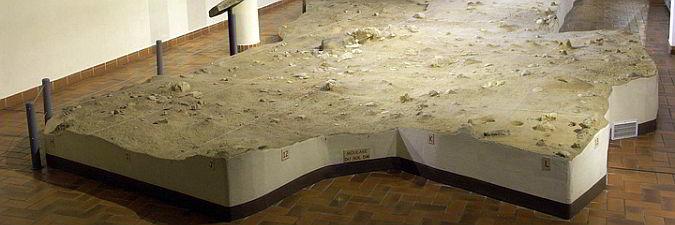 Musée Archéologique Nice