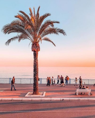 A palm tree on the promenade at sunset, people enjoying the view towards the beach, beautiful colours, Promenade des Anglais